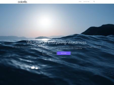 plantilla-wordpress-shapely